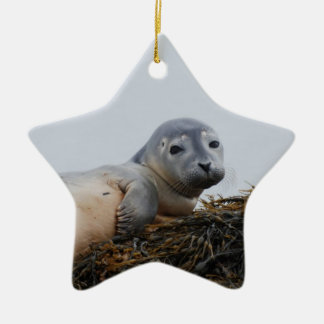 Cute Seal Pup Christmas Tree Ornament