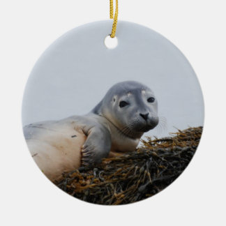 Cute Seal Pup Christmas Tree Ornaments