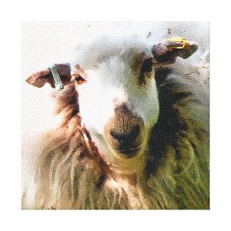 CUTE SHEEP CANVAS PRINT