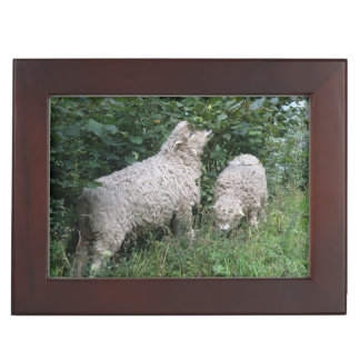 Cute Sheep Eating Leaves Custom Keepsake Box