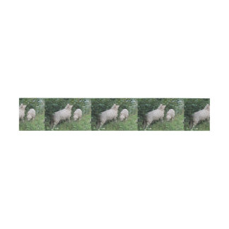 Cute Sheep Eating Leaves Invitation Belly Band