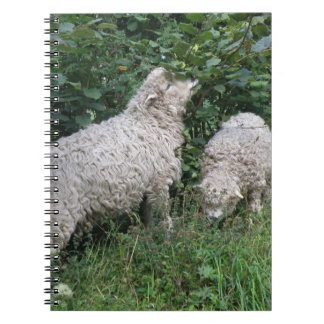Cute Sheep Eating Leaves Notebook