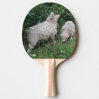 Cute Sheep Eating Leaves Ping Pong Paddle