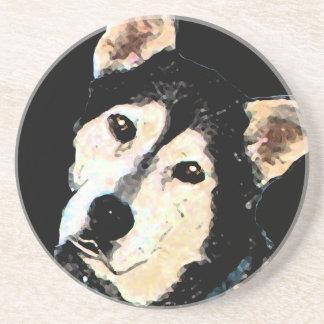 Cute Shepherd Husky Dog Portrait Beverage Coaster