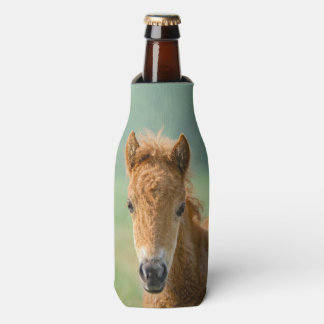 Cute Shetland Pony Foal Horse Head Frontal Photo - Bottle Cooler
