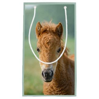 Cute Shetland Pony Foal Horse Head Frontal Photo - Small Gift Bag