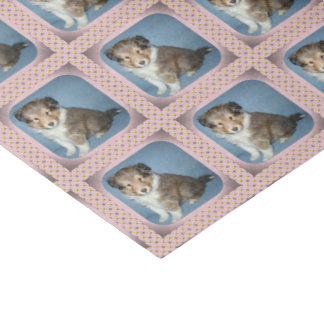 Cute Shetland Sheepdog Puppy Tissue Paper Wrap