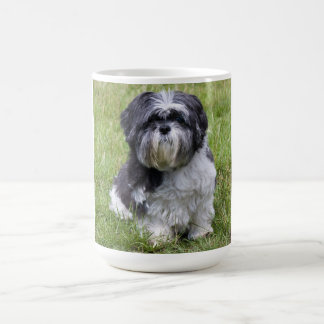 Cute shih tzu dog cute photo tea, coffee mug