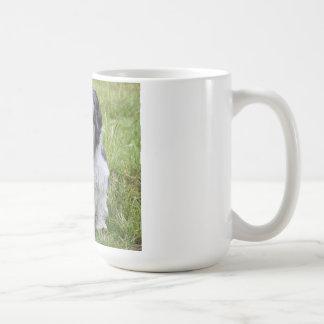 Cute shih tzu dog cute photo tea coffee mug