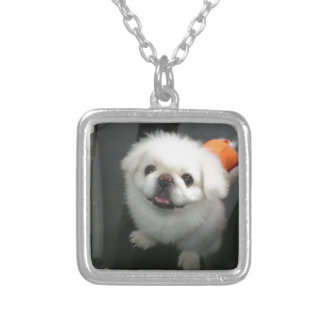 Cute shih tzu looking at the camera necklaces