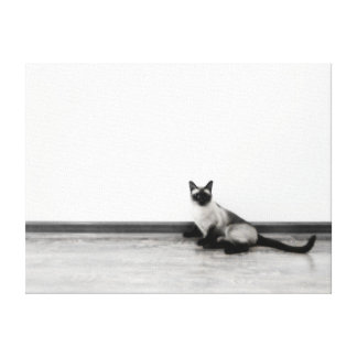 CUTE Siamese Cat Portrait Photograph Canvas Print