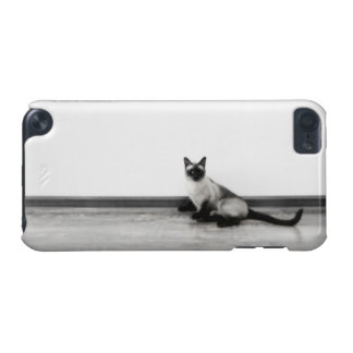 CUTE Siamese Cat Portrait Photograph iPod Touch 5G Case