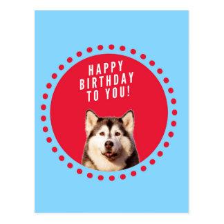 Cute Siberian Husky Happy Birthday blue red dots Postcard