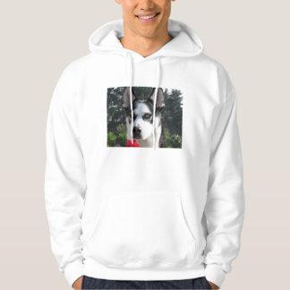 Cute Siberian Husky Hoodie
