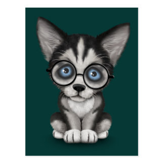 Cute Siberian Husky Puppy Wearing Glasses Teal Postcard