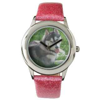 Cute Siberian Husky Watch
