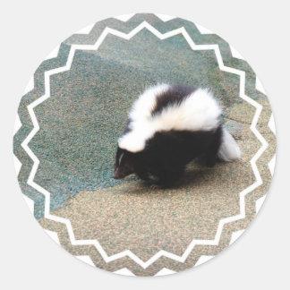 Cute Skunk Sticker
