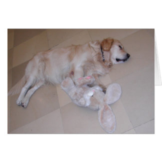 Cute Sleeping Golden Retriever  With Toy Rabbit Card