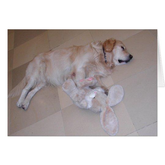 Cute Sleeping Golden Retriever With Toy Rabbit Card