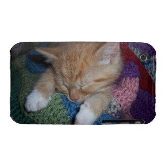 Cute Sleeping Kitten iPhone 3 Case-Mate Cases