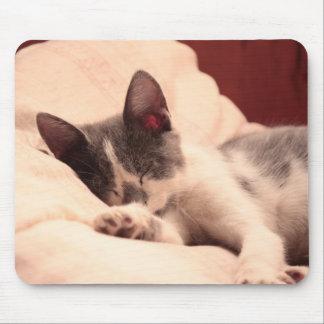 Cute Sleeping Kitten Mousepad