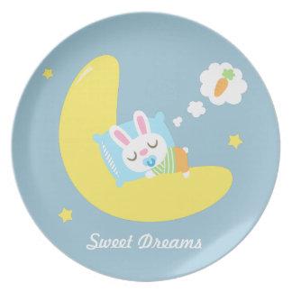 Cute Sleeping Little Baby Bunny on Moon Plate