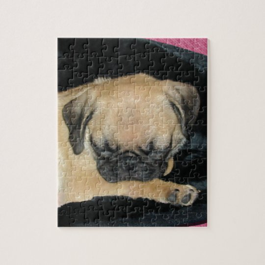 Cute Sleeping Pug Puppy Jigsaw Puzzle