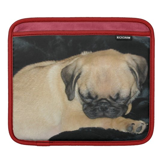 Cute Sleeping Pug Puppy Sleeve For iPads