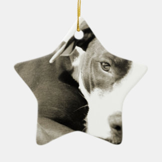 cute sleepy lazy pit bull dog christmas ornament