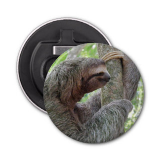 Cute Sloth Bottle Opener