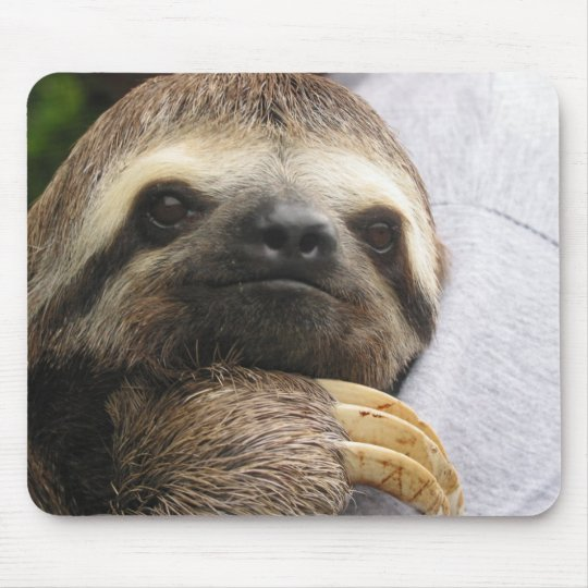Cute Sloth Face Mouse Mat