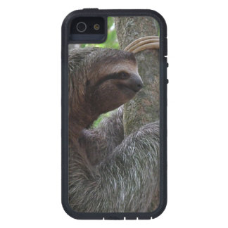 Cute Sloth iPhone 5 Case