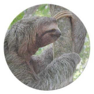 Cute Sloth Plate