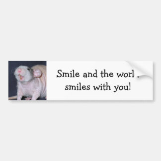 Cute Smile Rat Bumper Sticker