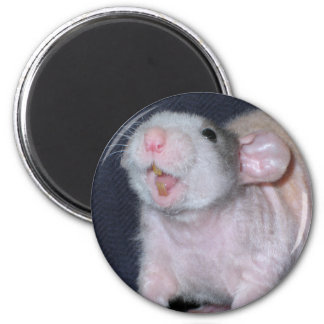 Cute Smile Rat Magnet