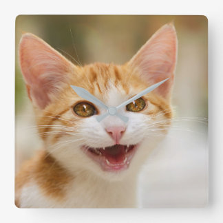 Cute Smiling Kitten Funny Cat Meow Photo - acrylic Wallclocks