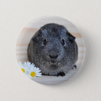 Cute Smooth, Silver Agouti Guinea Pig and Daisies 6 Cm Round Badge