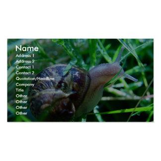 Cute Snail In Wet Green Grass Business Card Templates