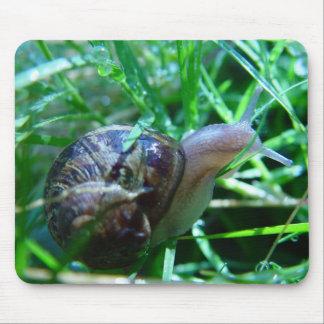 Cute Snail In Wet Green Grass Mouse Mat