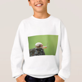 Cute Snail on Edge With Green Background Sweatshirt