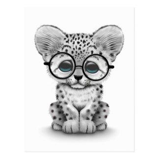 Cute Snow Leopard Cub Wearing Glasses on White Postcard
