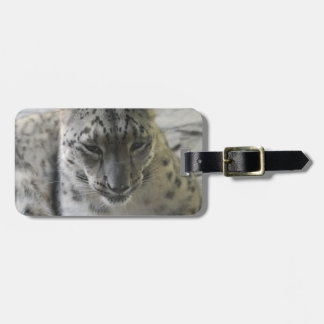 Cute Snow Leopard Luggage Tag