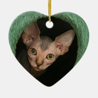 Cute sphynx kitten christmas ornament