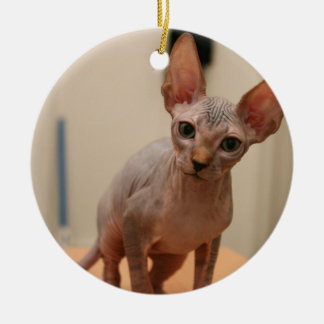 "Cute sphynx kitten ""I'm furless, are you?"" Christmas Ornament"