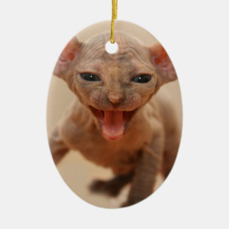 Cute sphynx kitten with tongue out christmas ornament