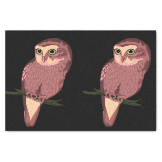 Cute Spotted Owl Tissue Paper