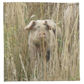 Cute Spotty Pig Napkin