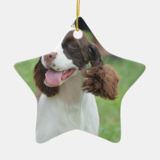Cute Springer Spaniel Christmas Ornaments