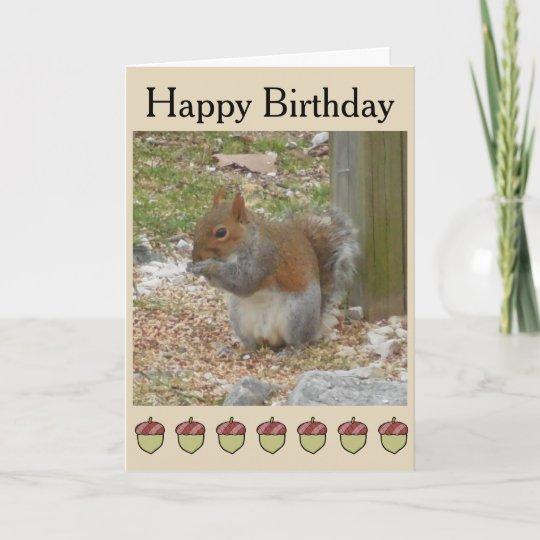Cute Squirrel Birthday Card Zazzle