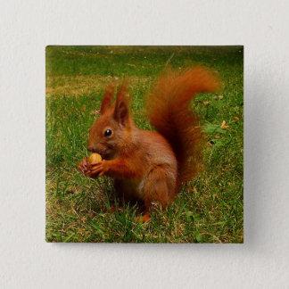 Cute Squirrel Button